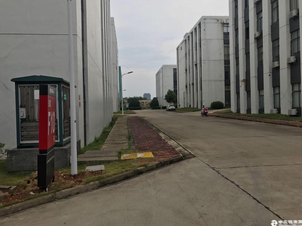 新洲阳逻港工业园低价出租