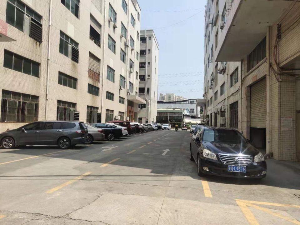 松岗江边新出楼上980平方带装修厂房-图2