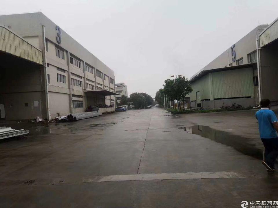 惠州沥林成熟工业区新出花园式标准独门独院10000平方出租