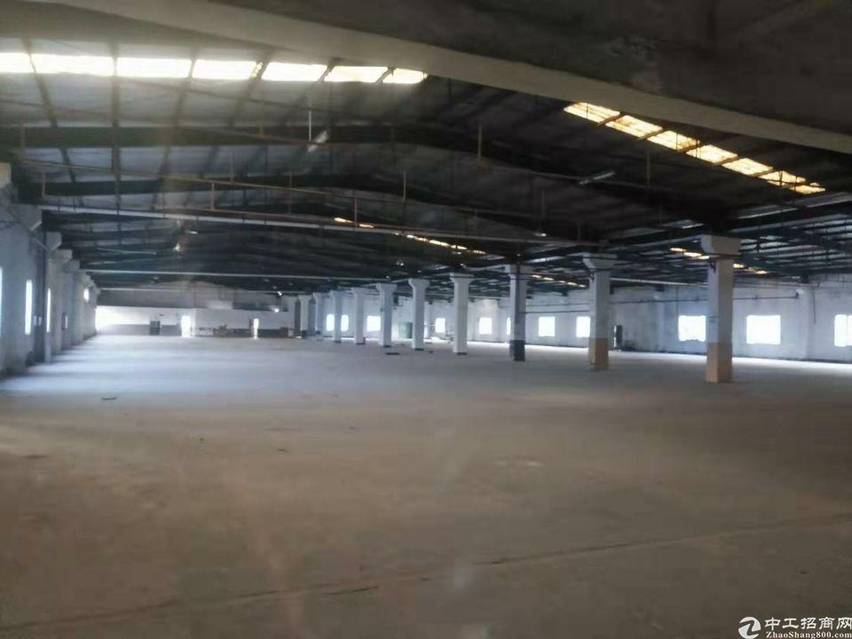 新圩独院钢构面积2100平方,空地2000平方