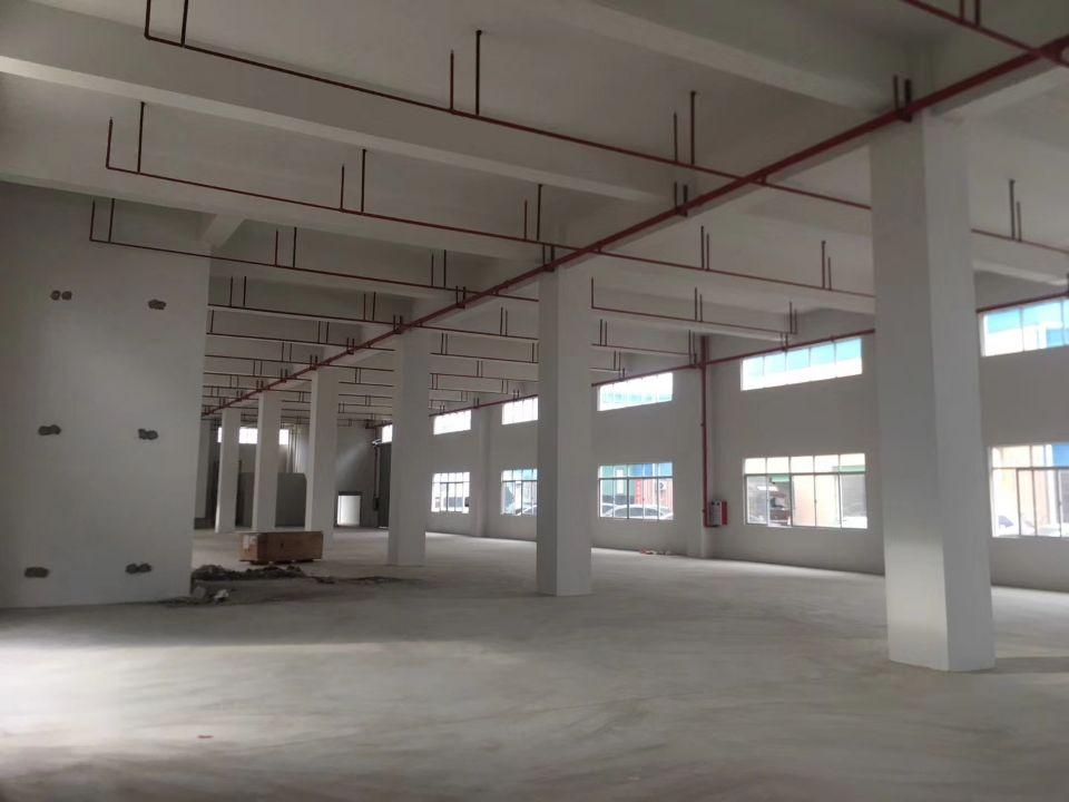 横沥镇全新厂房500平方带消防喷淋厂房招租
