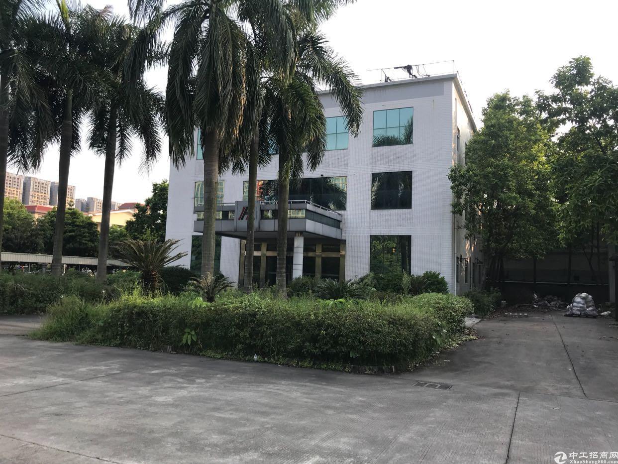 万江3500平米独院带独立办公楼