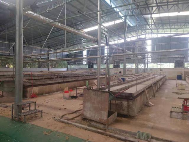 惠州杨村镇合水占地2600,建筑2400㎡村委厂房转让