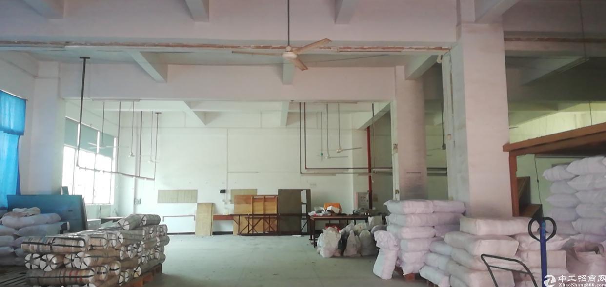 惠州惠环标准厂房一楼500平方