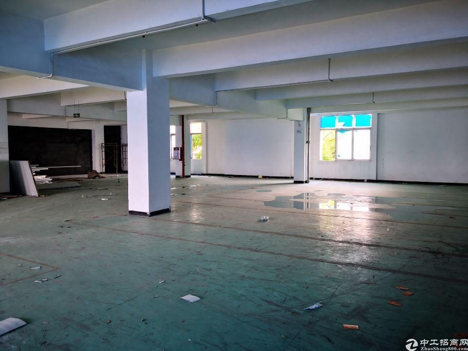 茶山镇现成办公室带地坪漆分租二楼500平方