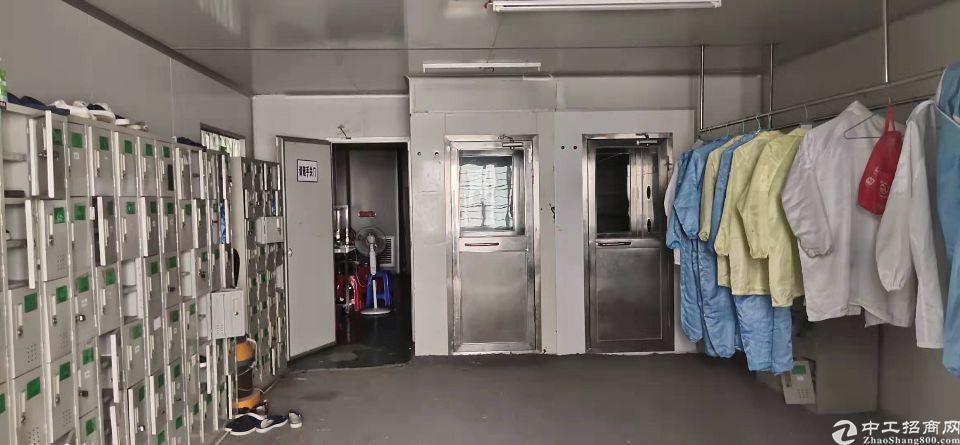 长安镇街口新出二楼带装修厂房1100平方招租
