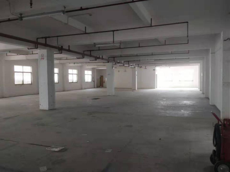 虎门新联独院3600平方,可分租,带精装修办公室-图3