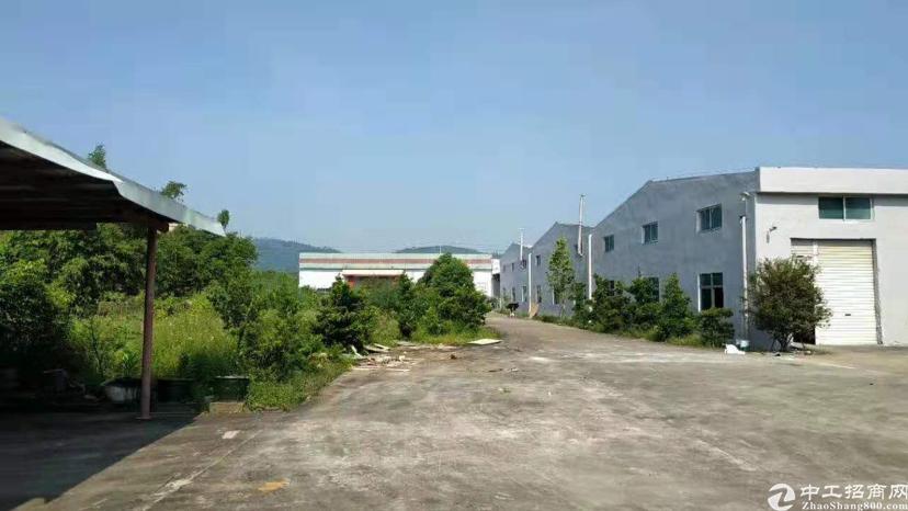 惠阳区新圩镇独院钢构厂房9500平-图5