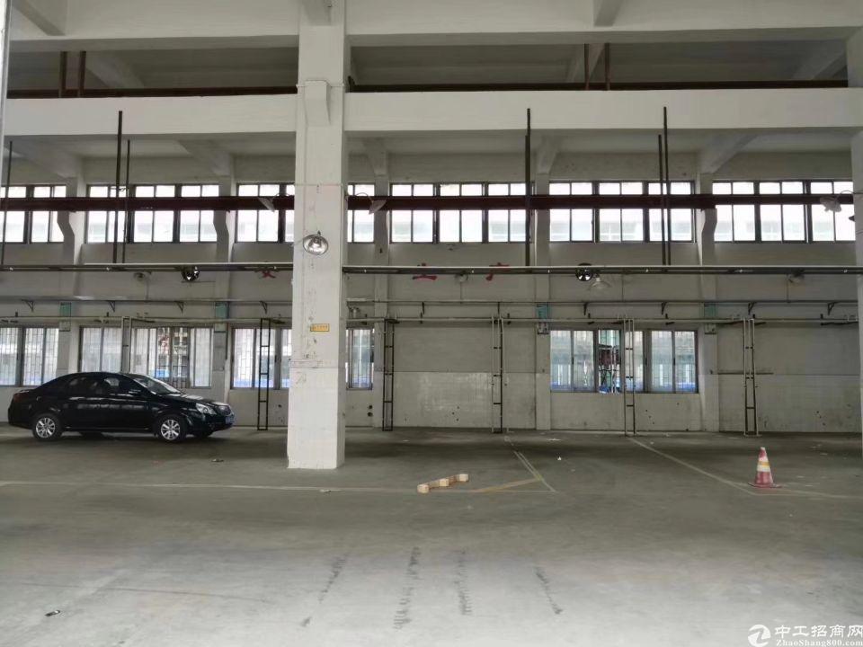广州市南村镇可办环评有证厂房出租2300方