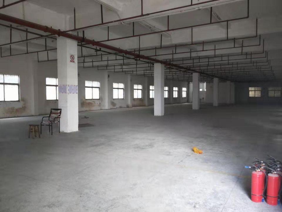 虎门新联独院3600平方,可分租,带精装修办公室-图2
