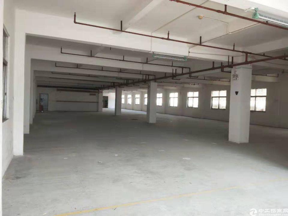 虎门新联独院3600平方,可分租,带精装修办公室-图5