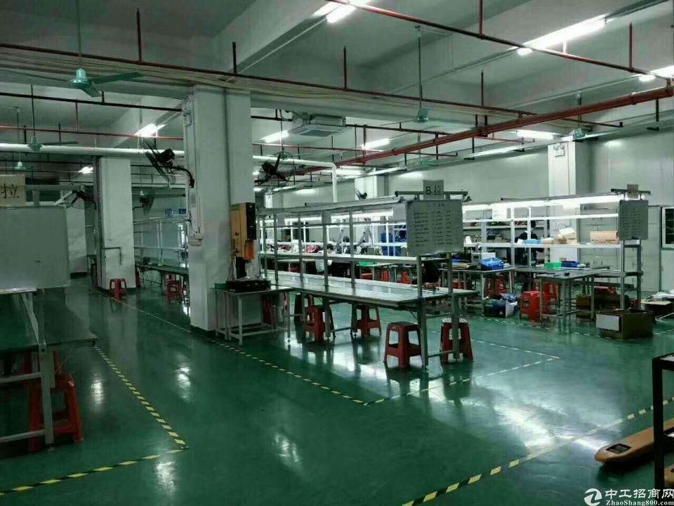 松岗高新产业园原房东三楼整层1500平精装厂房出租