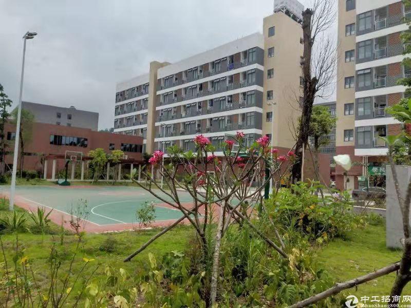 惠州市原房东花园标准厂房8000平出租可分租