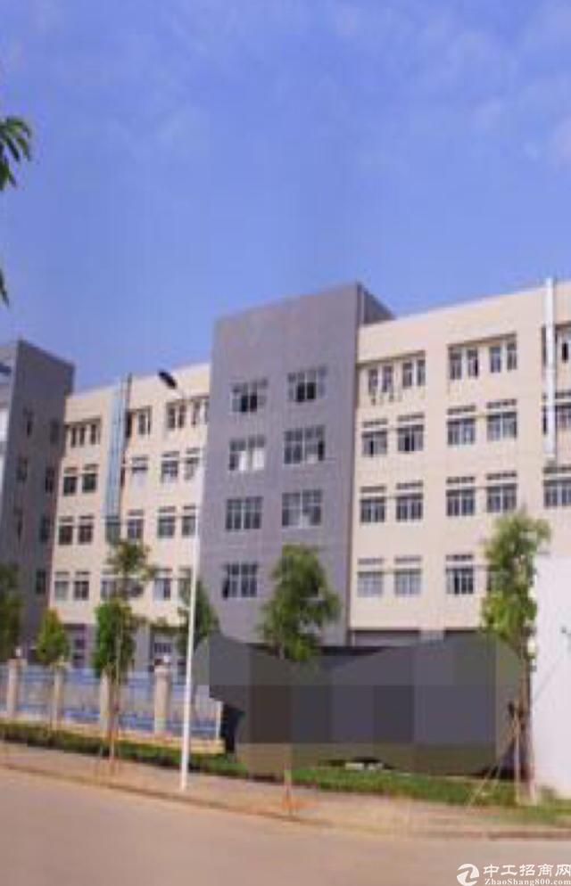 惠州市大亚湾占地35000m²国有证厂房出售