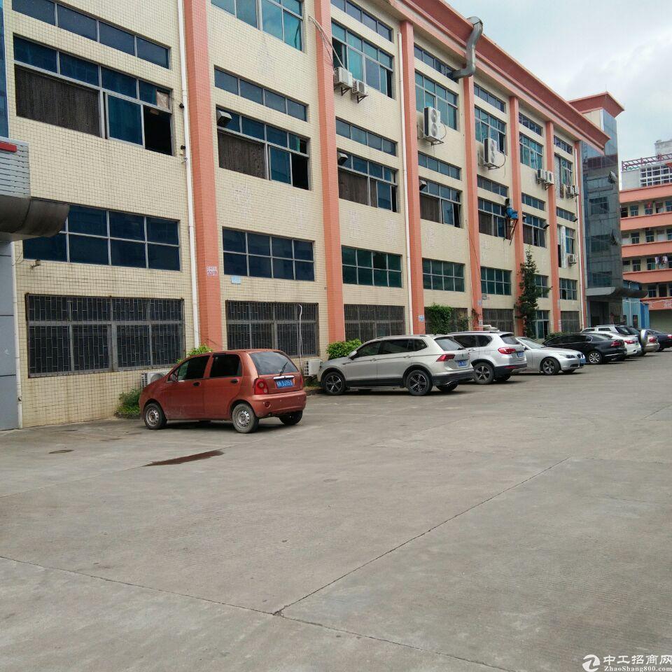 塘厦镇沙湖原房东二楼500平方,带办公室装修,适合做电子仓库