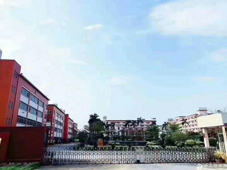 中山市120000平米独门独院可做学校厂房出租