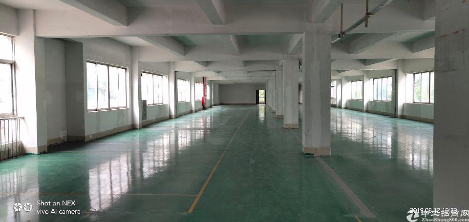 南沙带地坪漆标准厂房出租