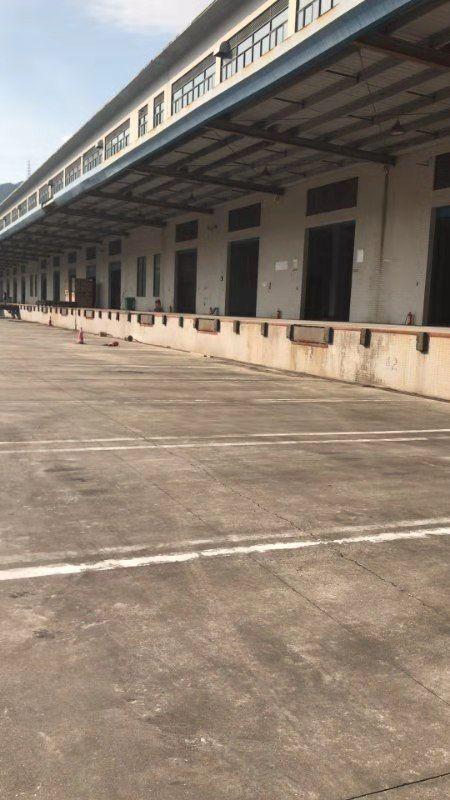 盐田港新出一楼8000平带卸货平台标准物流仓库,大小分租