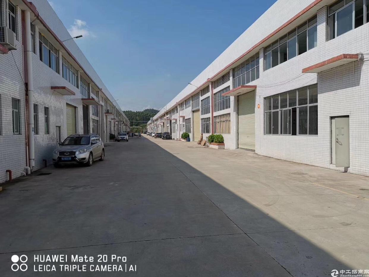博罗县泰美镇占地31667m²厂房出售