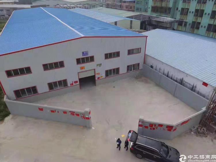 望牛墩全新独院厂房12米高钢结构3500平方