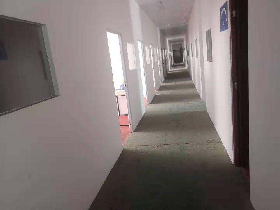 天河车陂2850方冷冻仓库出租大小可分