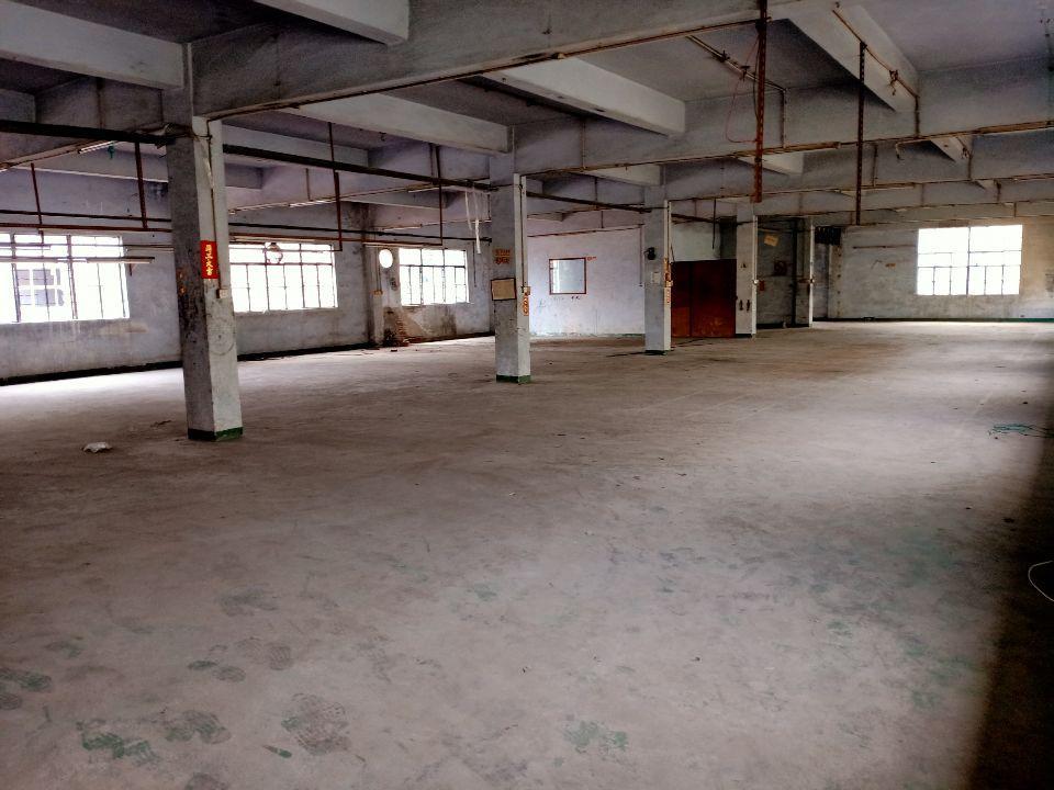新出道滘镇原房东独门独院标准厂房3800平工业用地环评能办