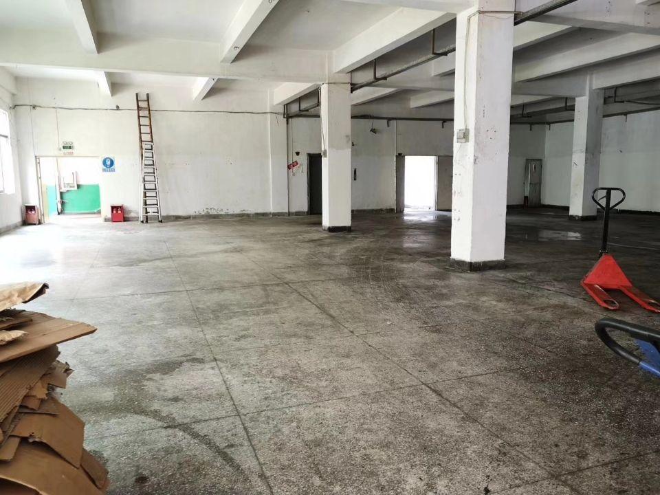 华南城附近500米处标准一楼500平方厂房出租