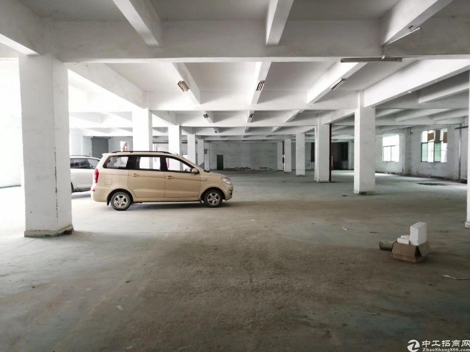 新圩原房东标准一楼出租