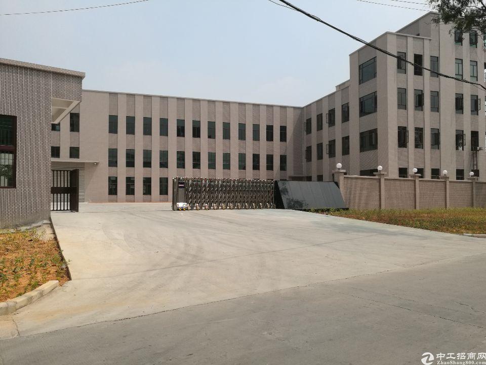 茶山独院标准9000平方厂房招租