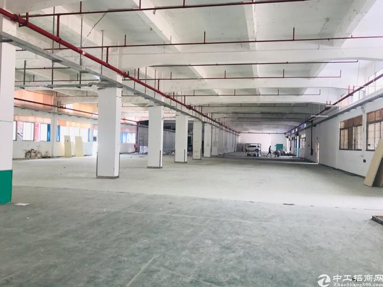 塘厦镇138工业区三千平方厂房可以做仓库