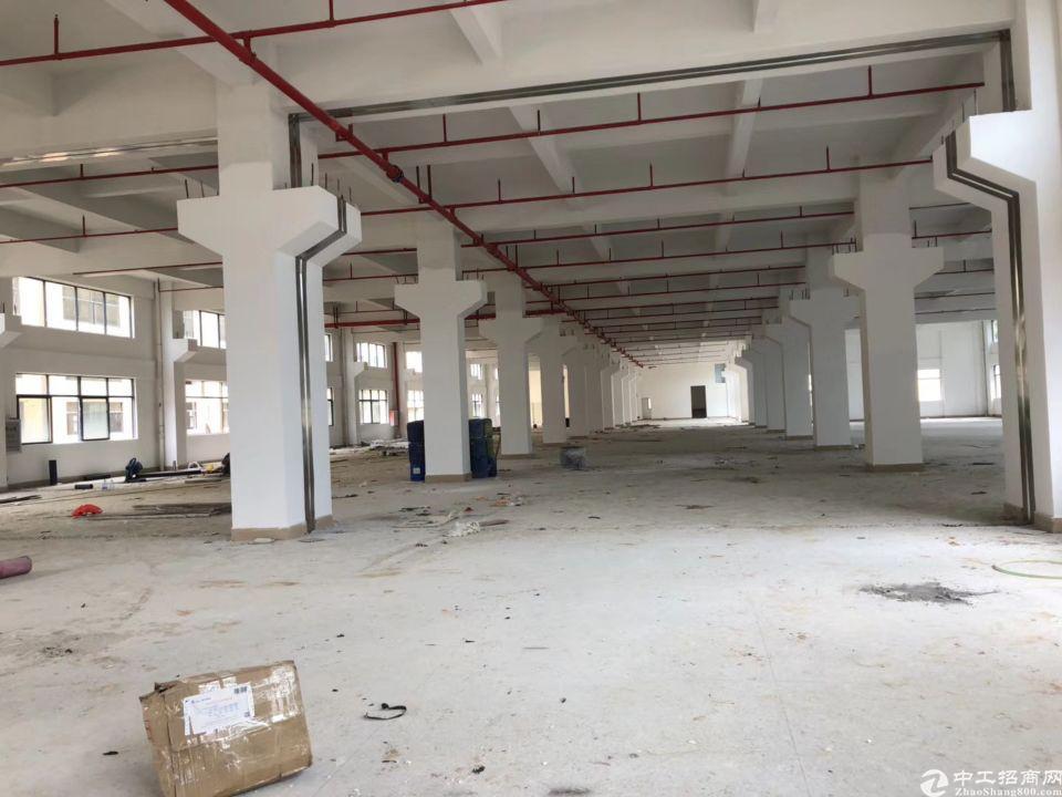 新出望牛墩原房东标准厂房260000平