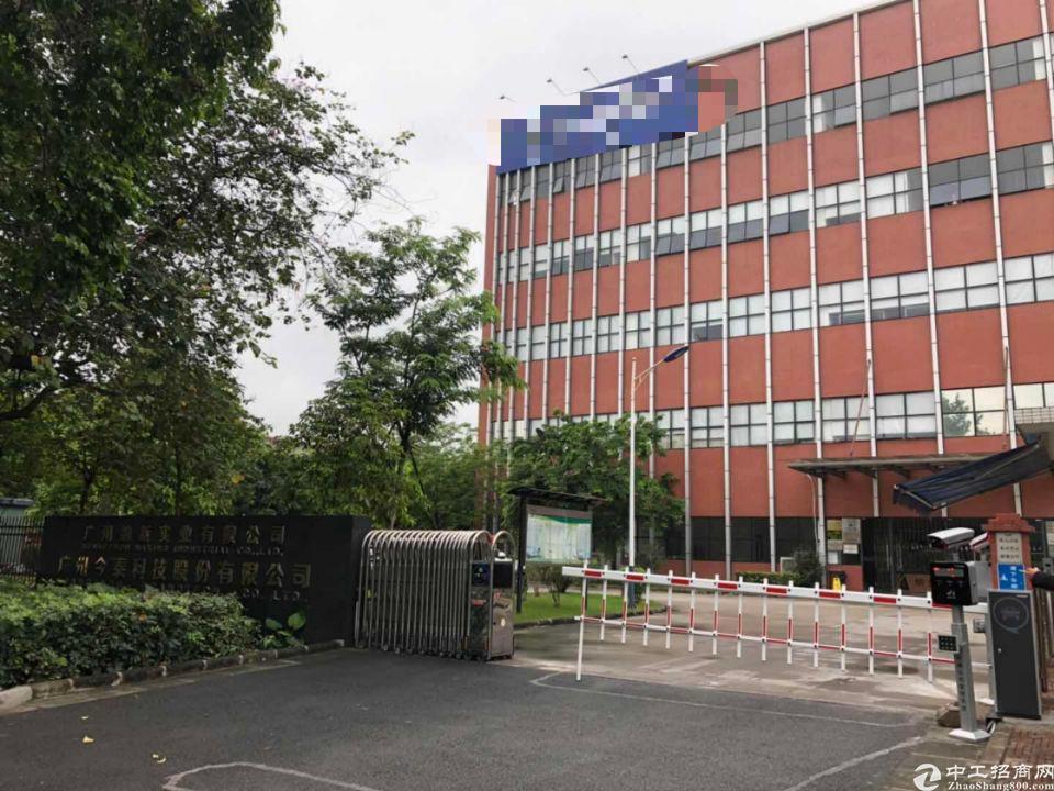 黄埔区标准厂房一楼出租2000方可分租自带环评有蒸汽有装修