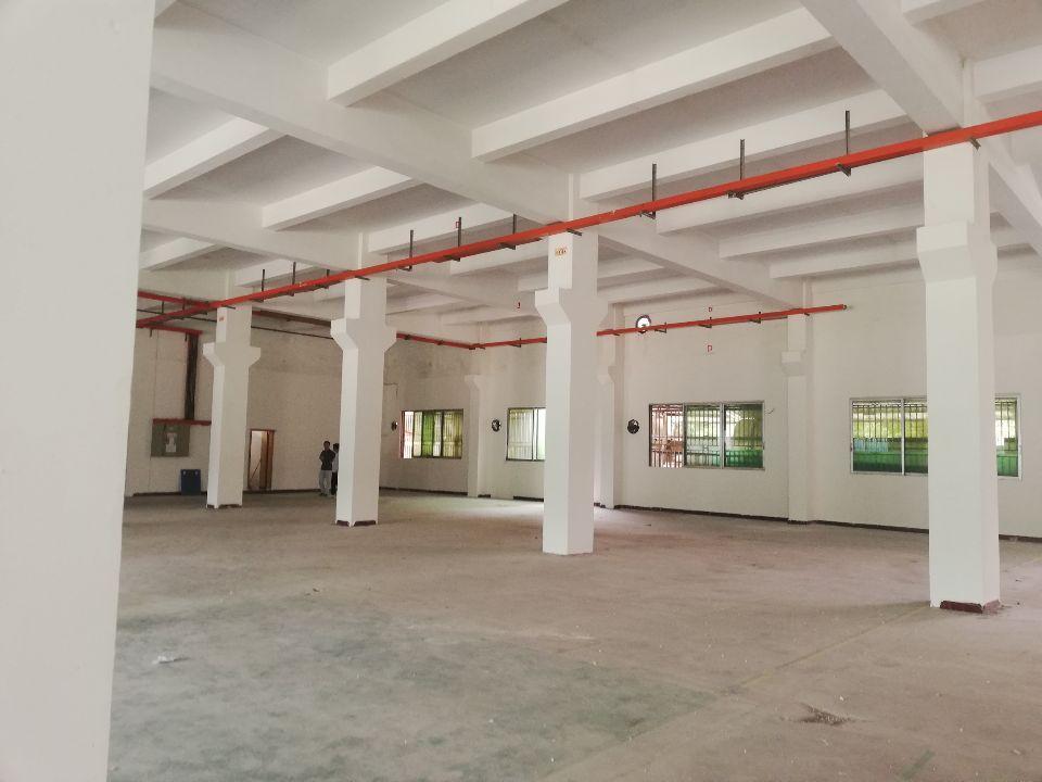 塘厦新出标准厂房原房东无公滩2100平方-图3