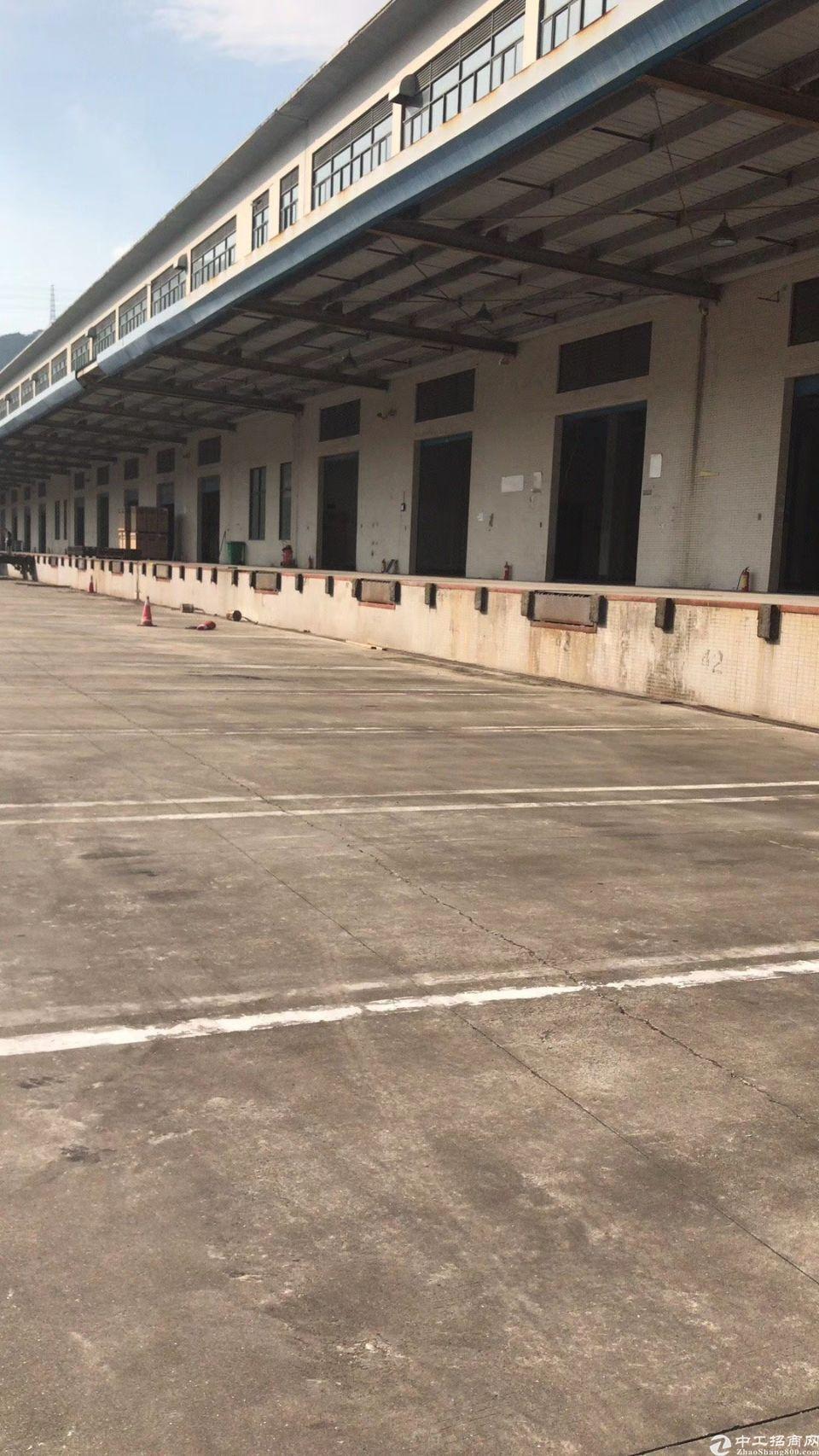 盐田港新出一楼10000平带卸货平台标准物流仓库,大小分租