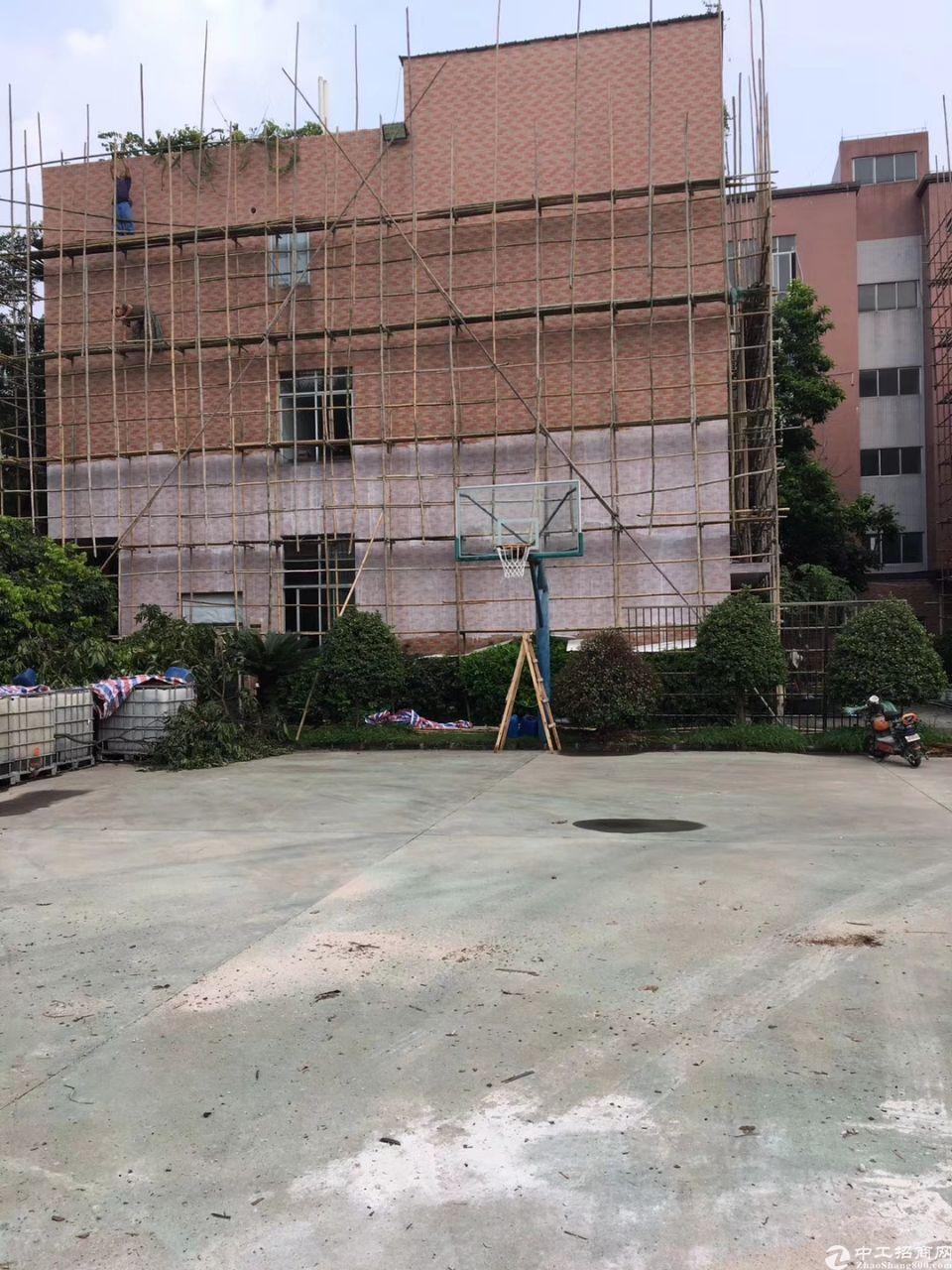 白云人和独门独院标准厂房分租一楼层高6米可办环评水电按需-图3