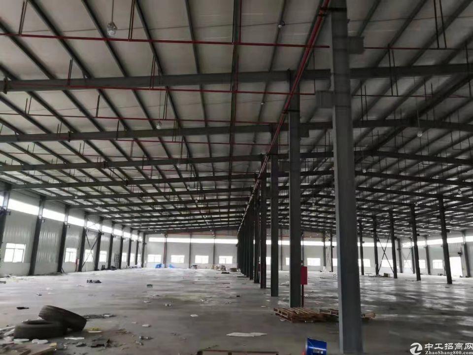 三和经济开发区新出独院9米钢构13000平方-图4