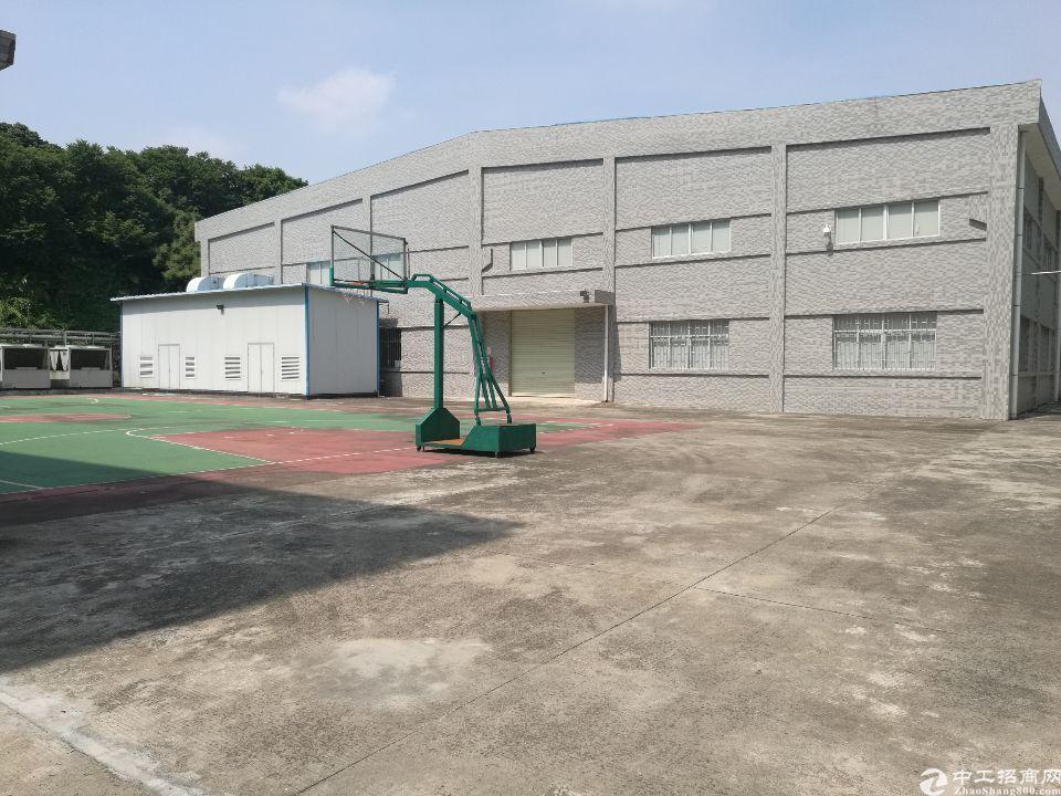 茶山镇独院单层2800平方厂房招租
