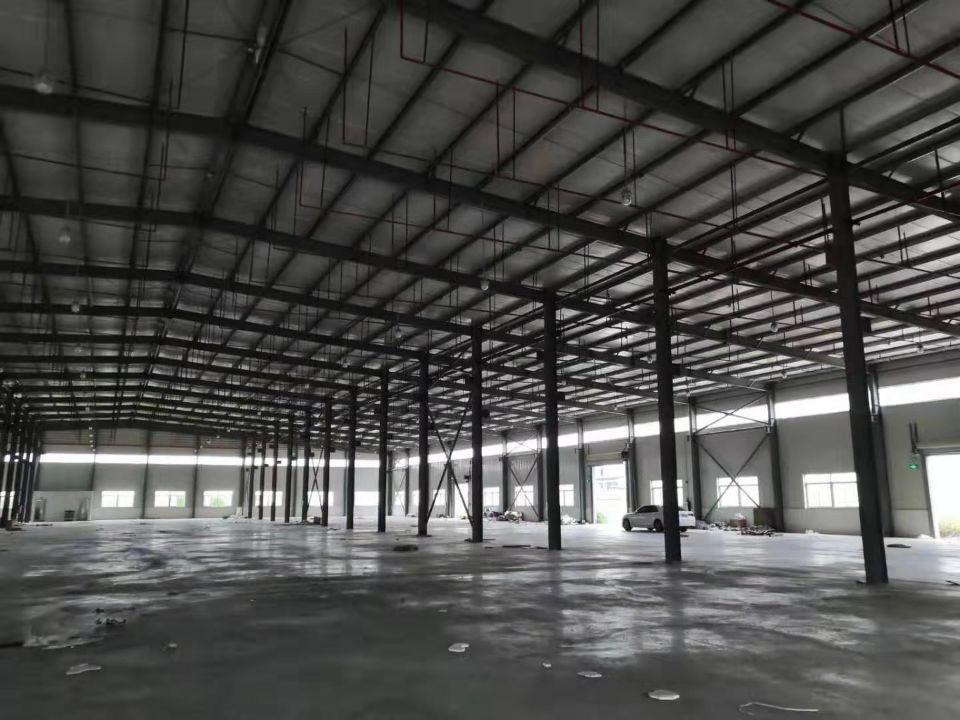 三和经济开发区新出独院9米钢构13000平方-图3
