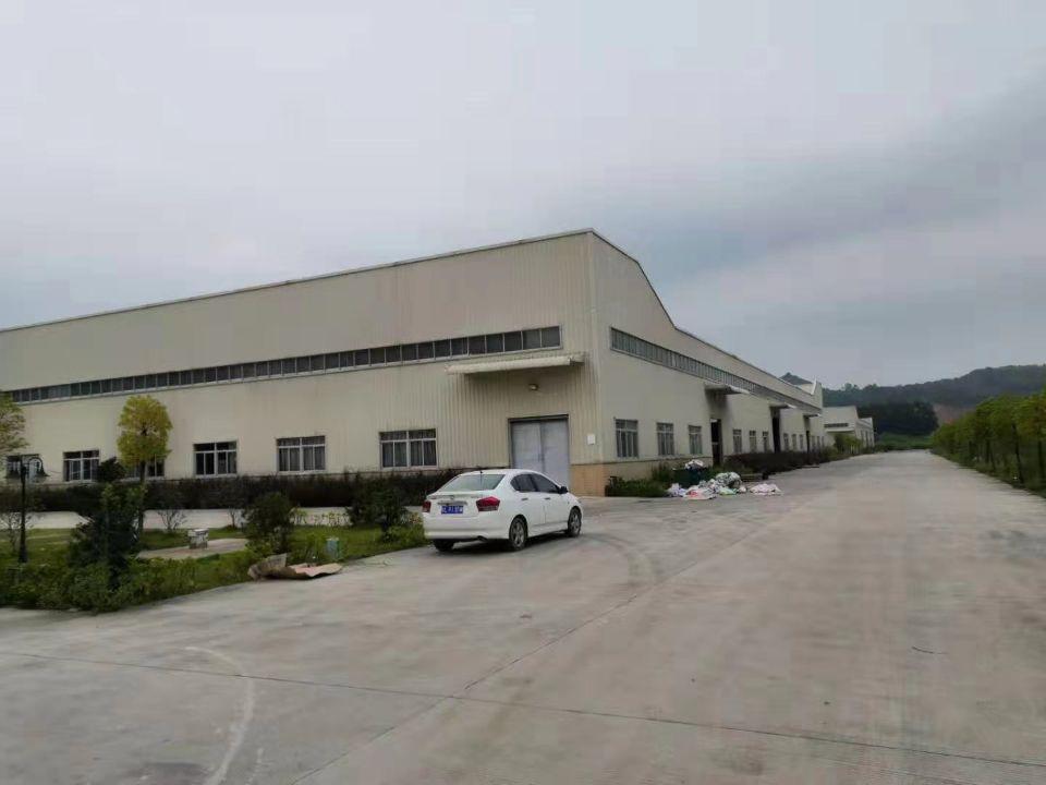 三和经济开发区新出独院9米钢构13000平方-图5