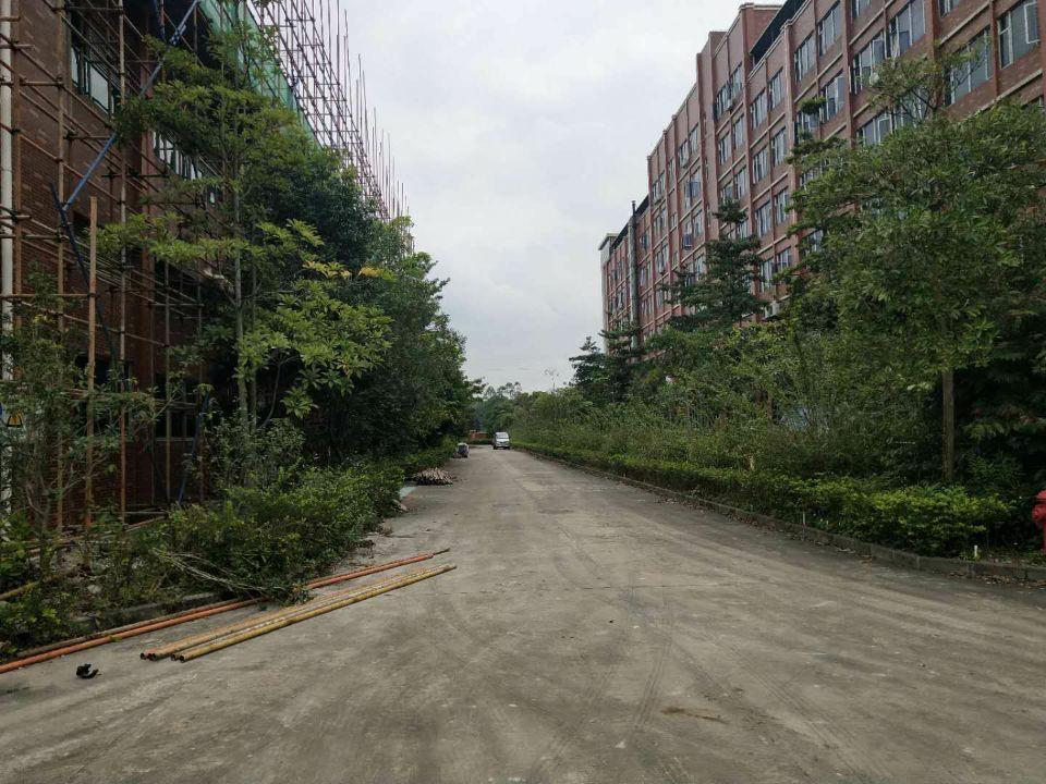 霞涌镇工业园区标准厂房6000,证件齐全,一楼带航车