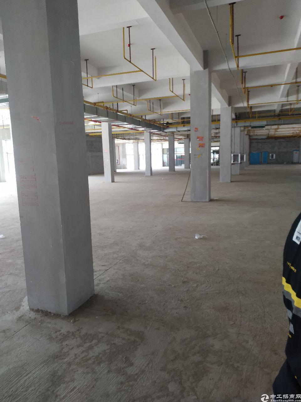黄陂武湖864平全新厂房,价格优惠,可按揭