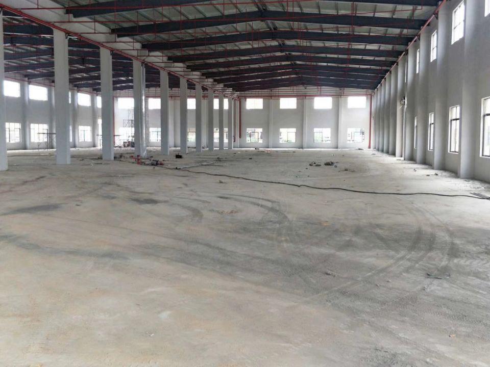 惠东县白花镇汽车站边原房东独院钢构