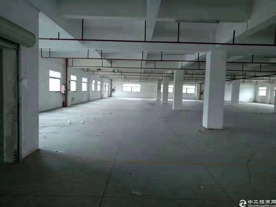洪梅镇铺面1楼标准厂房600平租金7000元