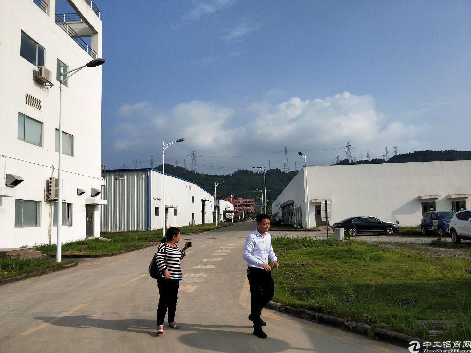 观澜观光路梅观高速出口新出原房东独院钢构厂房30000平米-图4