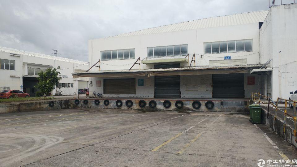 盐田一楼仓库招租11800平方,12米高,有卸货平台,喷淋