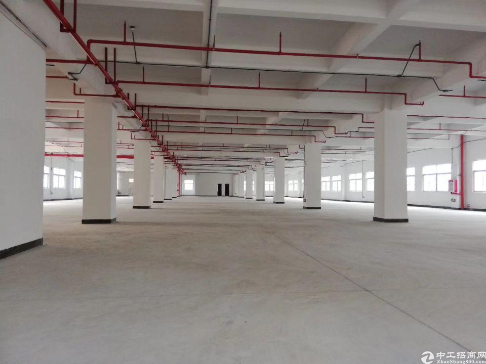 大朗镇新出原房东独院厂房3层总面积6000平方!