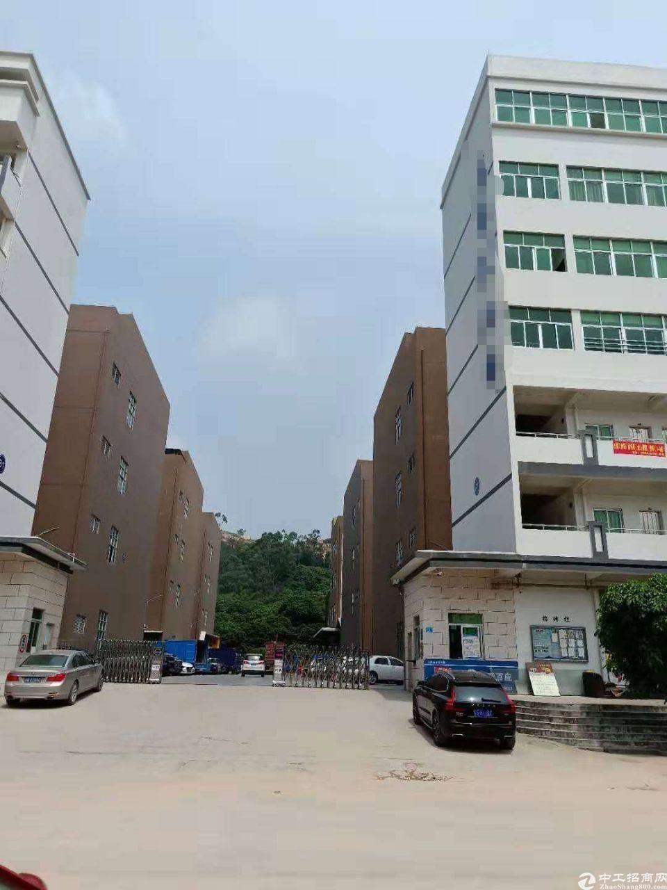 大岭山独栋标准1-4层6400平带豪华装修招租-图4