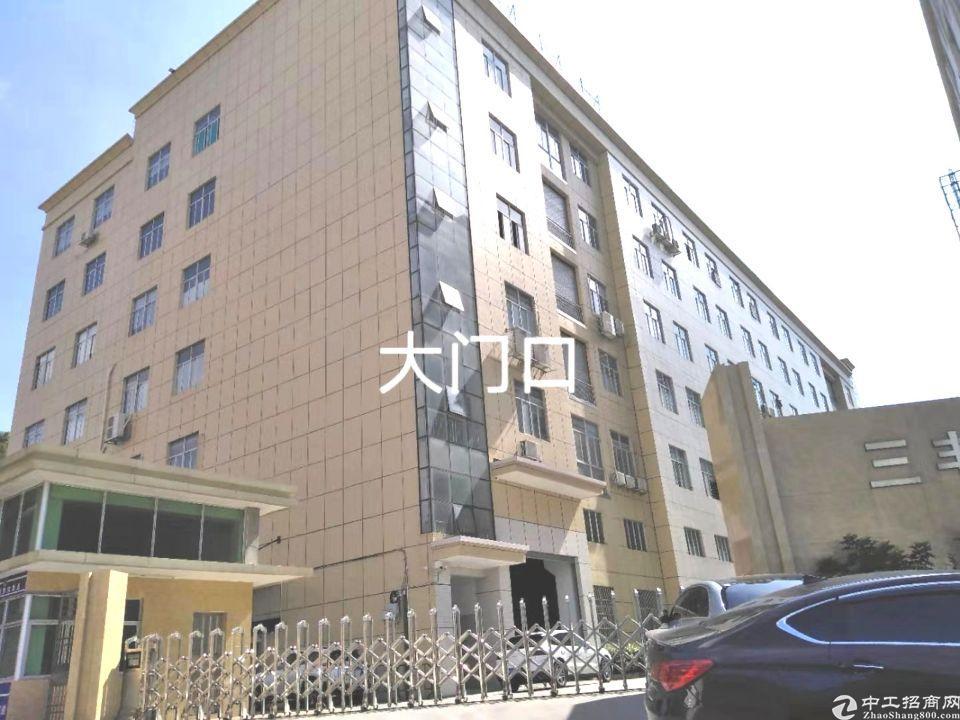 大岭山镇杨屋村工业园分租一楼1216平方有牛角带标准厂房