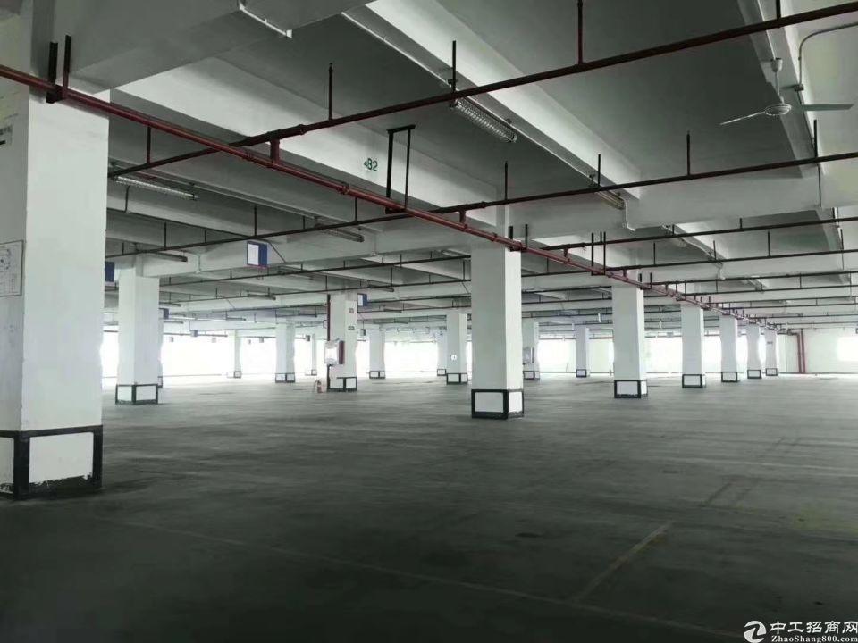 观澜梅观高速口100米3楼5500平米带喷淋可做仓库电商等