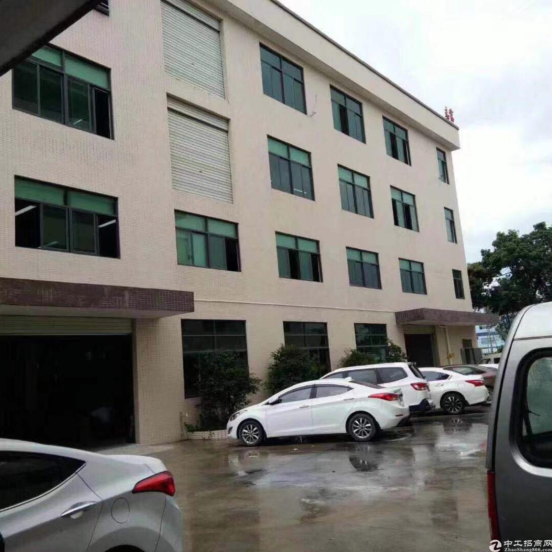 3层4200平方,一楼6米办公楼1-3层豪华装修